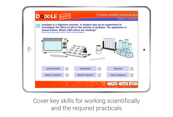 A Doddle self-marking quiz – Enzyme Practical Activity