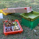 Conker Rolling - What's in my tray?