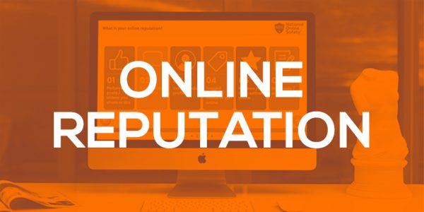 Online Reputation screenshot