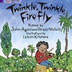 Twinkle Twinkle Firefly cover