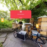 Beekeepers Garden storyworld